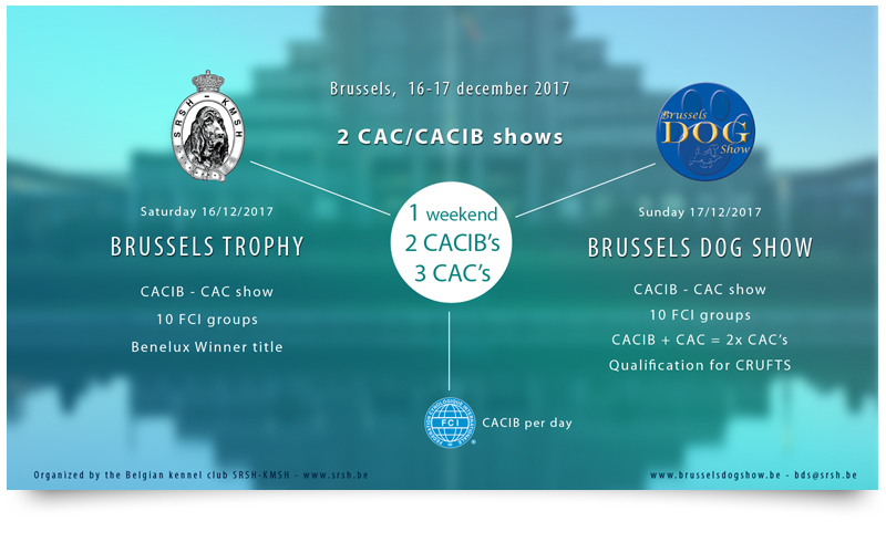 BDS 2017 - Double CACIB weekend