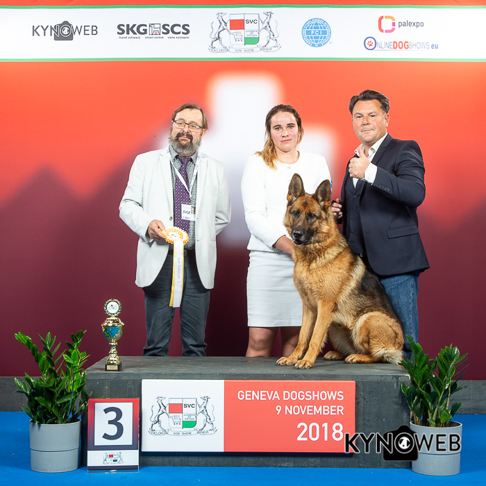 OnlineDogShows - Welcome